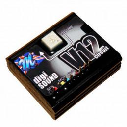 Mtroniks Digi-Sound 5c V12...