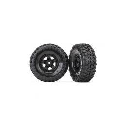 """Traxxas kolo 1.9"""", disk TRX-4 Sport, pneu Canyon Trail (pár) - 1"""
