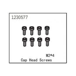 Cap Head Screw M2*4 (8) - 1