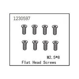 Flat Head Screw M2.5*8 (8) - 1
