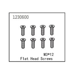 Flat Head Screw M3*12 (8) - 1
