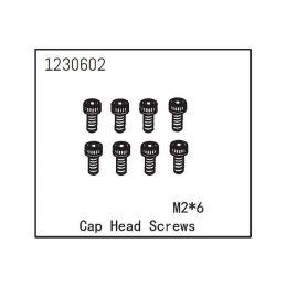 Cap Head Screw M2*6 (8) - 1