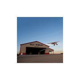 Hangar 9 XCub 2.94m 60cc ARF - 15