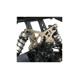 TLR 8ight-X Buggy 1:8 Race Kit - 12