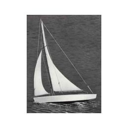 Ace Racing Sloop plachetnice 432mm - 1